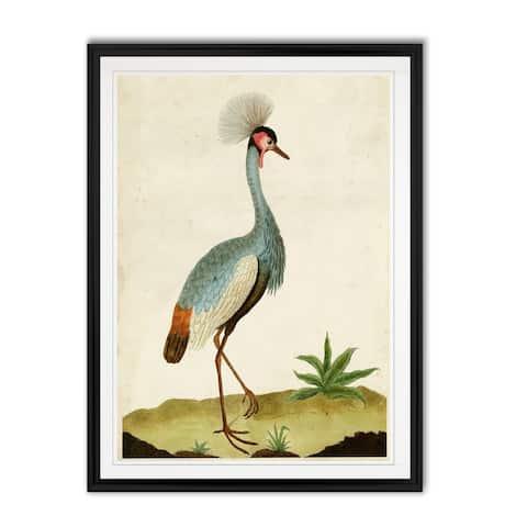 Heron Portrait I -Custom Framed Print