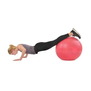 Sunny Health & Fitness No. 055 56cm Anti-burst Gym Ball