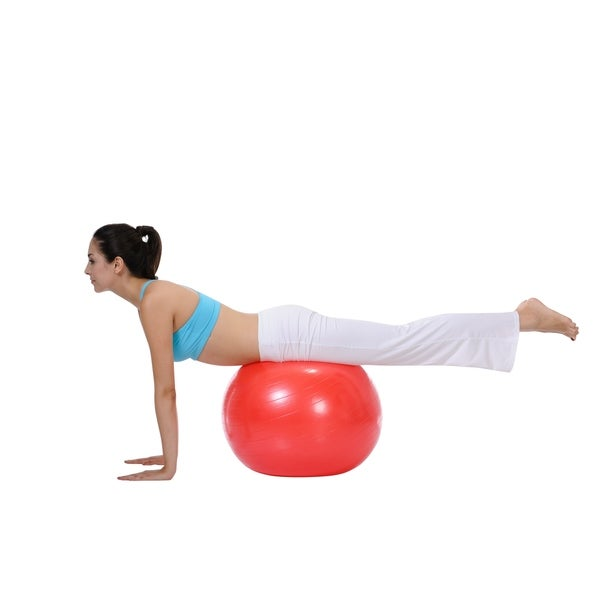 Sunny Health & Fitness No. 055 56cm Anti-burst Gym Ball