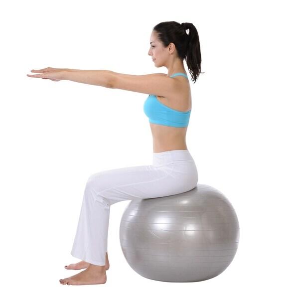 Sunny Health & Fitness 66cm Anti-Burst Gym Ball