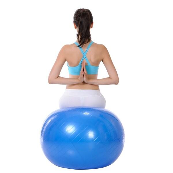 Sunny Health & Fitness No. 057 76.2cm Anti-burst Gym Ball