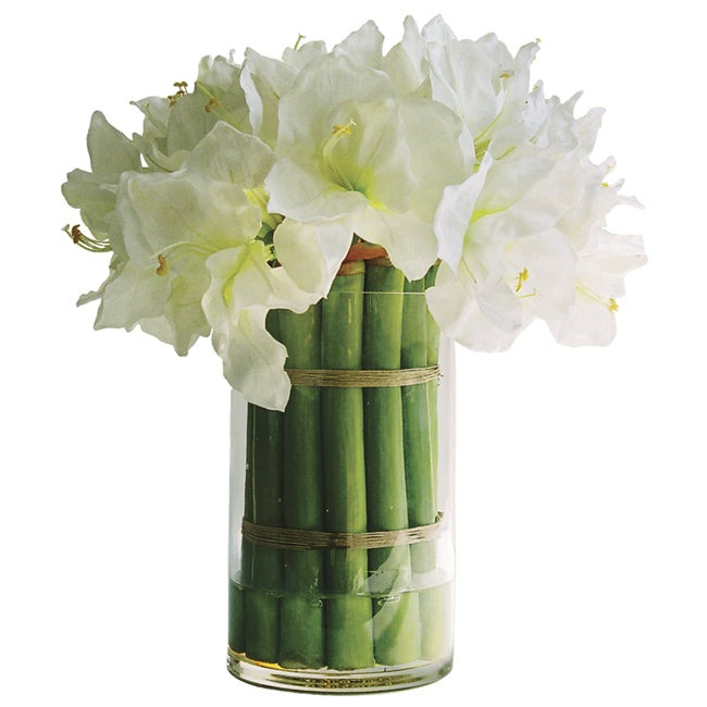 Silk white amaryllis with cylinder vase free shipping for Vase amaryllis