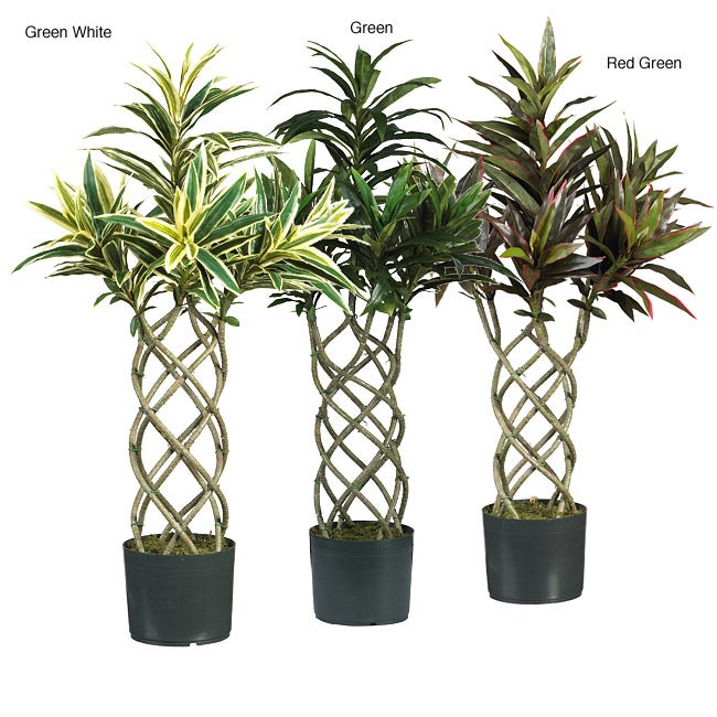 Twisted Dracaena Silk Plant Free Shipping Today