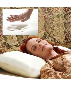 Classic Memory Foam Standard Pillow (case of 6)