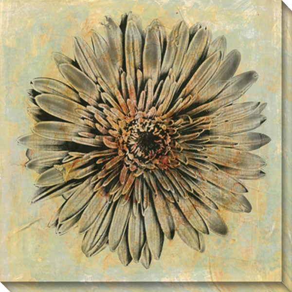 Gallery Direct Sara Abbott 'Evoke III' Wrapped Canvas Art
