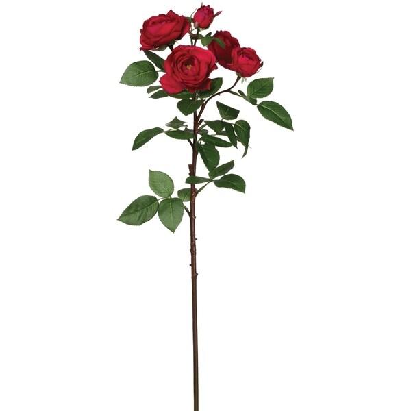 Spray Rose Stem