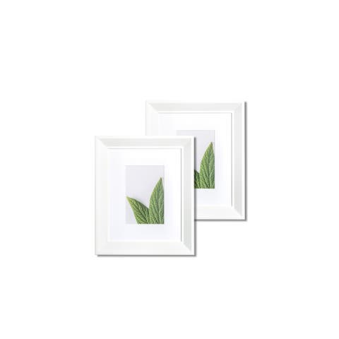 """VISTA Daintree Set of two 8""""x 10"""" Picture Frames, Wide Bevel in SOFT WHITE, Wide Mat w 4""""x 6"""" Opening"""