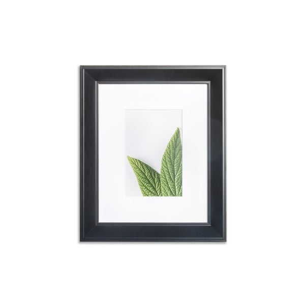 """VISTA Daintree 8""""x 10"""" Picture Frame, Wide Bevel in BLACK, Wide Mat w 4""""x 6"""" Opening"""