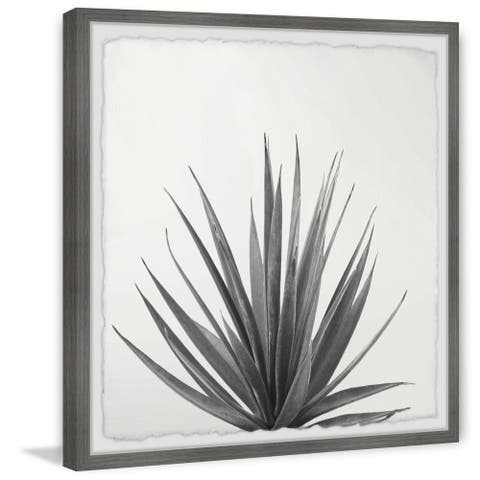 'Agave Crown' Framed Painting Print
