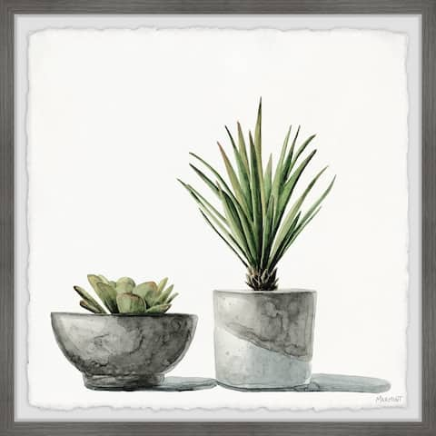 The Gray Barn 'Spiky Succulent' Framed Painting Print