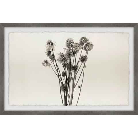 Gracewood Hollow Dandelion in Grey Framed Painting Print