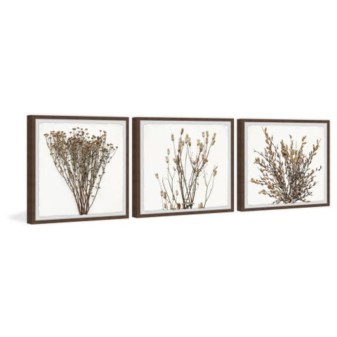 Gracewood Hollow Brown Branches Wall Triptych