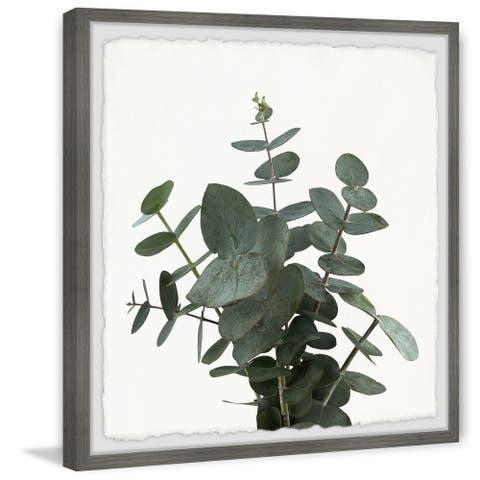 'Green Eucalyptus Leaves' Framed Painting Print