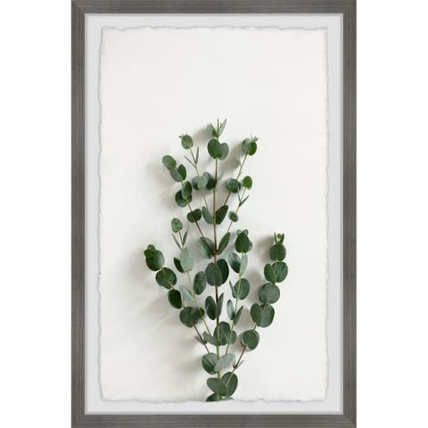 'Eucalyptus Branches' Framed Painting Print
