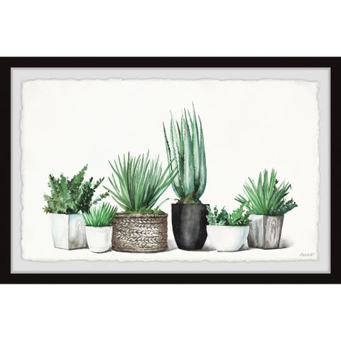 'Assorted Succulents' Framed Painting Print
