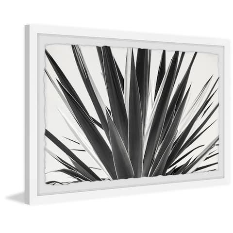 Strick & Bolton Sword-shaped Leaves Framed Print