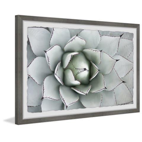 Taylor & Olive Handmade Succulent Framed Print