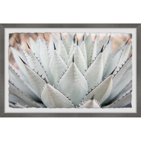 Parry's Agave' Framed Painting Print