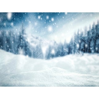 Snowy Day Holiday Canvas Art