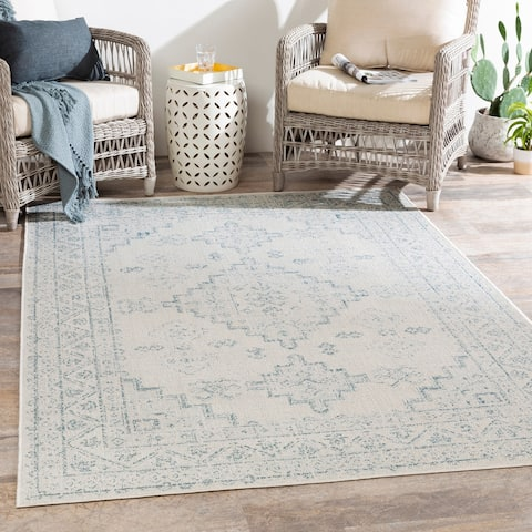 Susannah Indoor / Outdoor Updated Traditional Area Rug