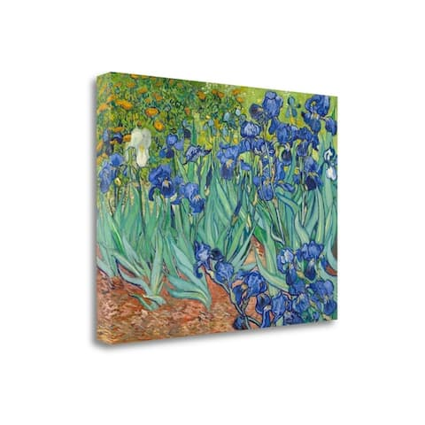 """""""Irises 1889"""" By Vincent Van Gogh, Fine Art Giclee Print on Gallery Wrap Canvas, Ready to Hang"""