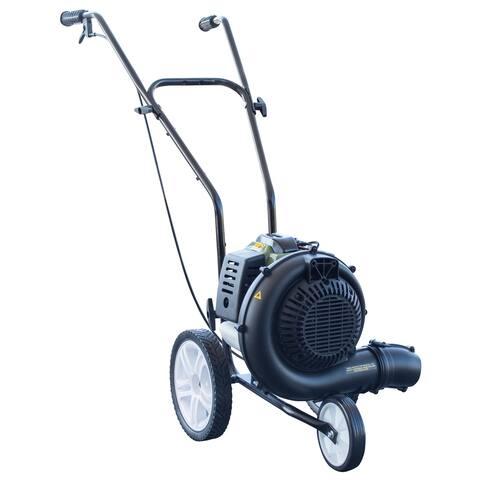 Sportsman Series 230 MPH 450 CFM Gas Powered Walk-Behind Blower