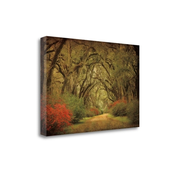 """""""Road Lined With Oaks And Flowers"""" By William Guion, Gallery Wrap Canvas"""