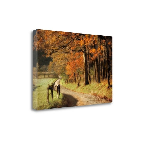 """""""Autumns Morning Light"""" By D. Burt, Fine Art Giclee Print on Gallery Wrap Canvas, Ready to Hang"""