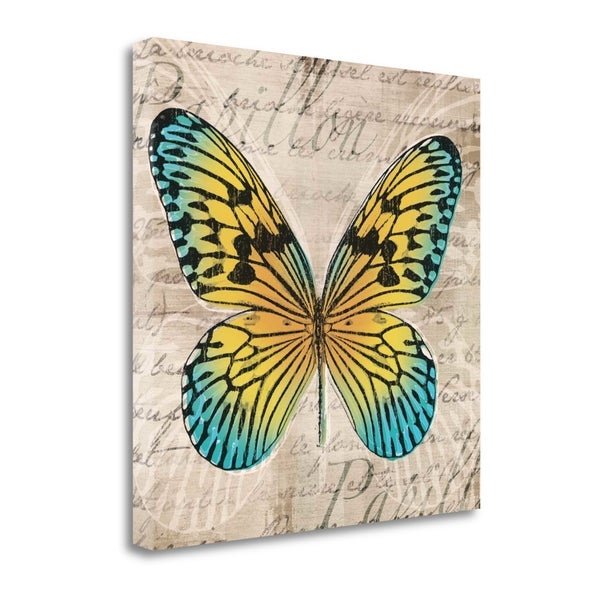 """Butterflies I"" By Tandi Venter, Fine Art Giclee Print on Gallery Wrap Canvas, Ready to Hang"