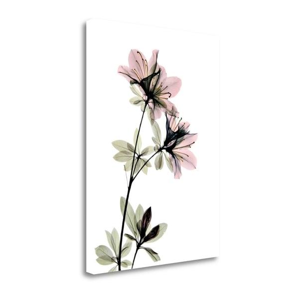 """Azalea"" By Acee, Fine Art Giclee Print on Gallery Wrap Canvas, Ready to Hang"