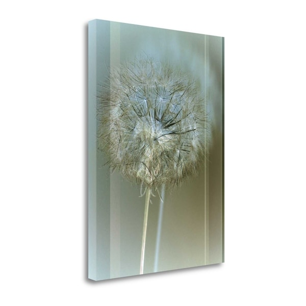 """""""Flaura II"""" By W. Blake, Fine Art Giclee Print on Gallery Wrap Canvas, Ready to Hang"""