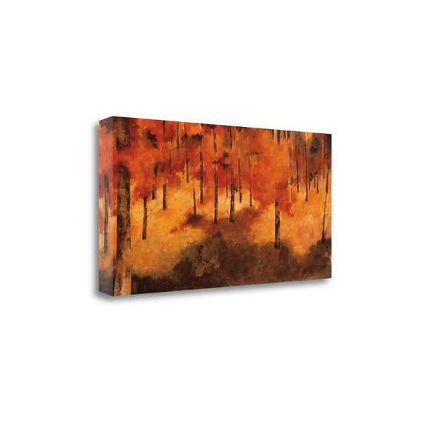 """""""Ive Been Here Many Times Before"""" By Claudia Ferrari, Gallery Wrap Canvas"""