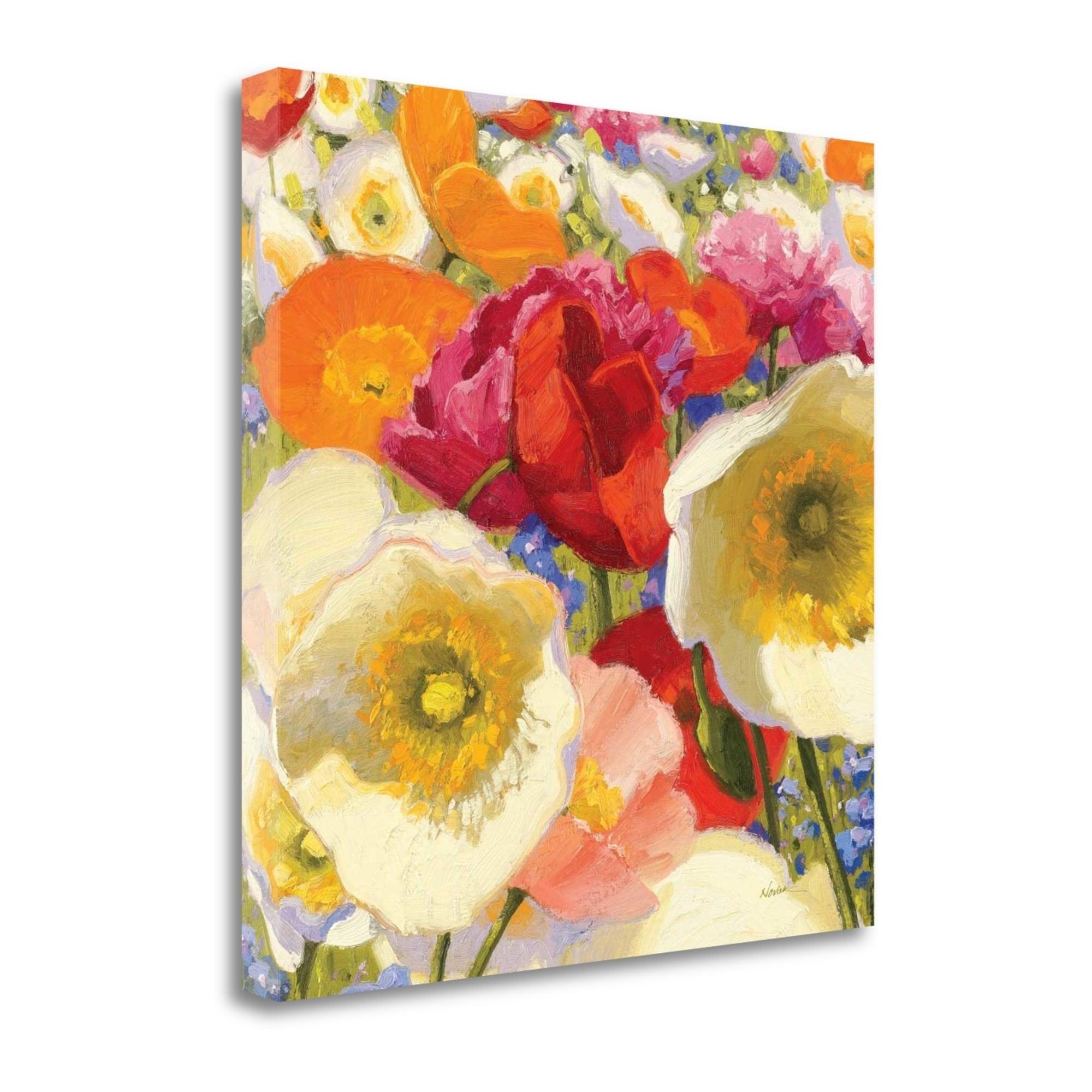 Sunny Abundance Ii By Shirley Novak Fine Art Giclee Print On Gallery Wrap Canvas Ready To Hang Overstock 30299363
