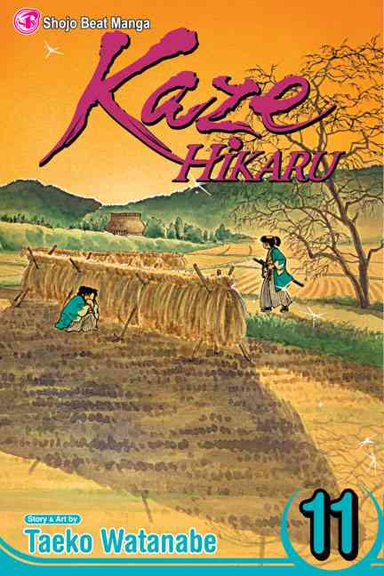 Kaze Hikaru 11 (Paperback)