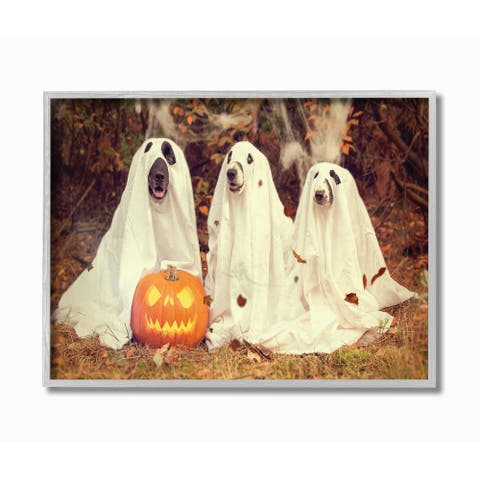Stupell Industries Vintage Photography Halloween Pumpkin And Ghost Dogs Grey Framed, 16 x 20, Proudly Made in USA - 16 x 20