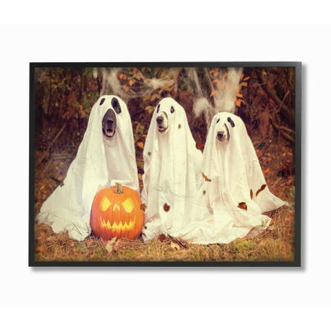 Stupell Industries Vintage Photography Halloween Pumpkin And Ghost Dogs Black Framed, 24 x 30, Proudly Made in USA - 24 x 30