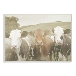 Stupell Industries Happy Neighbors Cows in the Field Wood Wall Art,13 x 19, Proudly Made in USA - 13 x 19
