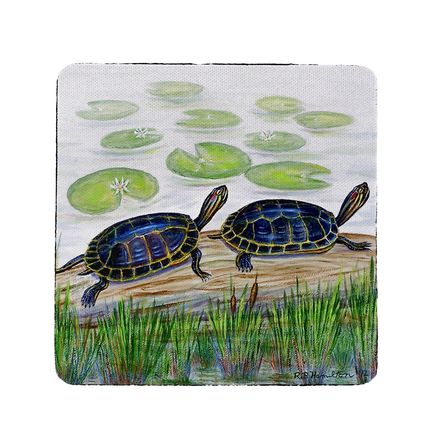 Two Turtles Coaster Set Of 4 Overstock 30374979