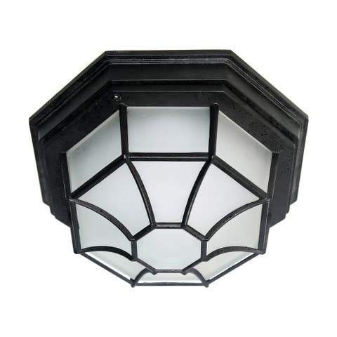 LED Spider Cage