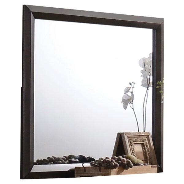 Transition Style Wooden Mirror with Rectangular Shape,Brown and Silver