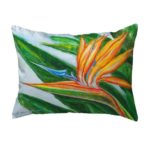 Bird of Paradise Small No-Cord Pillow 11x14