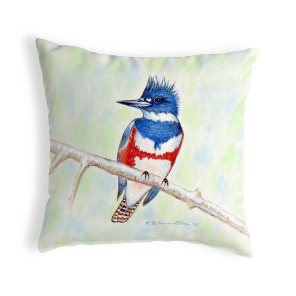 Kingfisher Small No-Cord Pillow 12x12