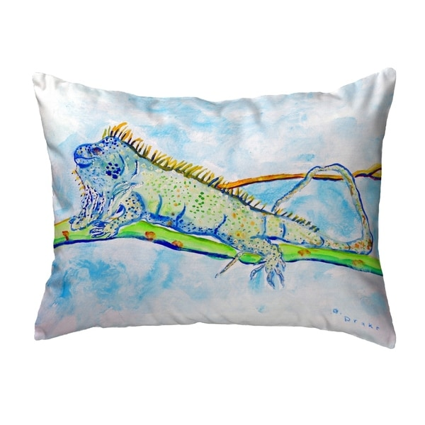 Iguana Small No-Cord Pillow 11x14