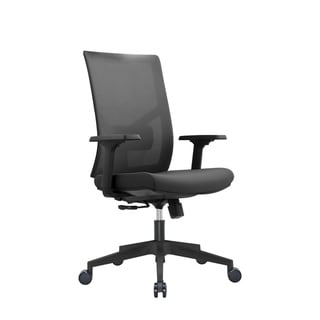 Ergonomic Multi Function Mesh Office Chair With Lumbar Support, Adjustable Armrest
