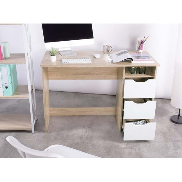 Computer Desk with Storage, Laptop Writing Desk for Home Office