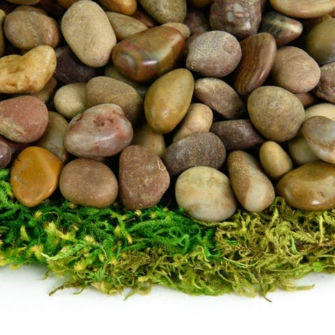 Polished Pebbles - Natural Decorative Stones Small Polished Rocks Fairy Garden, Aquarium, and Succulent Containers