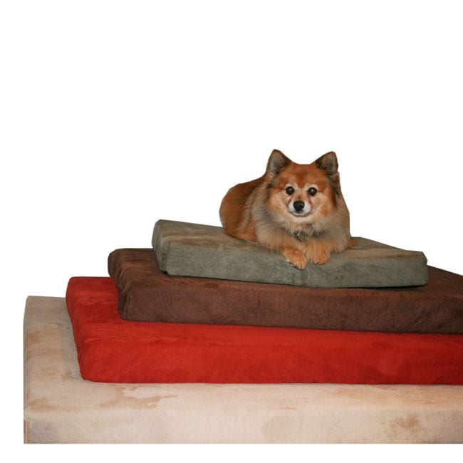 Anatomic Large Memory Foam Dog Bed with Removable Microfiber Suede Cover