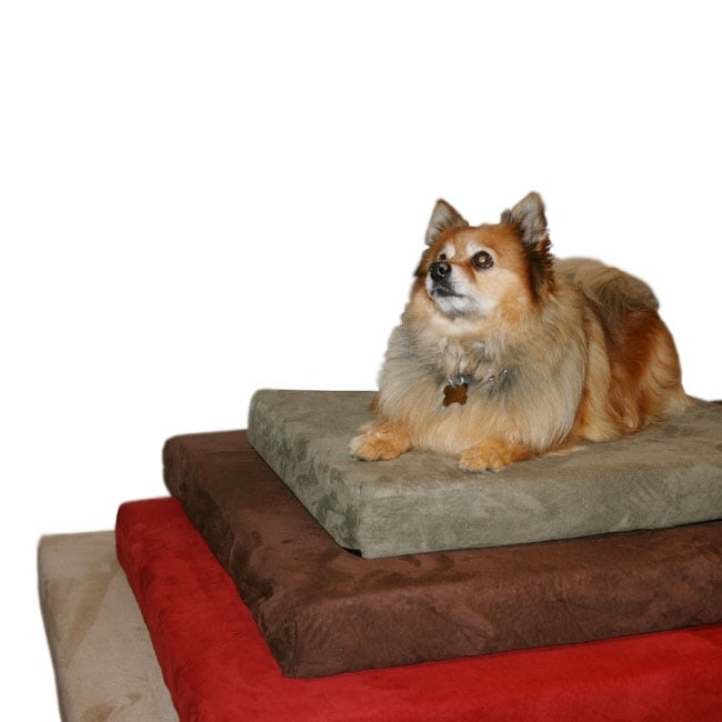 Anatomic Large Memory Foam Dog Bed with Removable Microfiber Suede Cover (Chocolate)