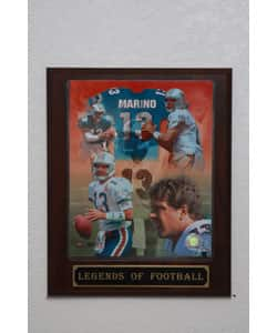 Dan Marino Collectible Plaque|https://ak1.ostkcdn.com/images/products/3057029/3/Dan-Marino-Collectible-Plaque-P11198029.jpg?impolicy=medium