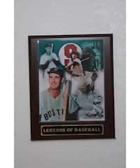 Ted Williams Collectible Plaque